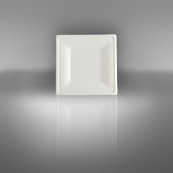 Sugarcane plate square 16 X 16 cm